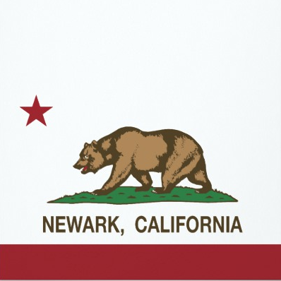 Newark Ca Tenting House Cost Termites Lowest Cost Guaranteed Fumigation Treatment Ailing House Pest Management Ailing House Pest Management Inc