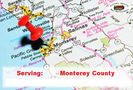 Pest Control Service – Termites Ants Bees Bedbugs Monterey County Ailing House Pest Management Inc